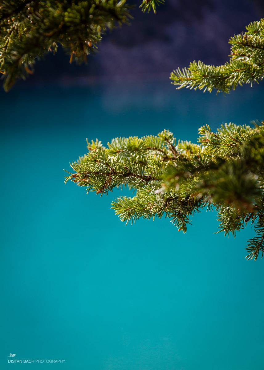 12 10 07 Banff-Lake Louise-4