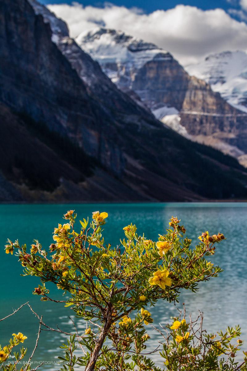 12 10 07 Banff-Lake Louise-8