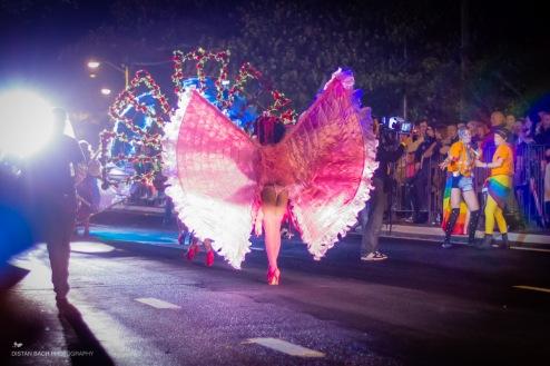 2013 Sydney Mardi Gras-10