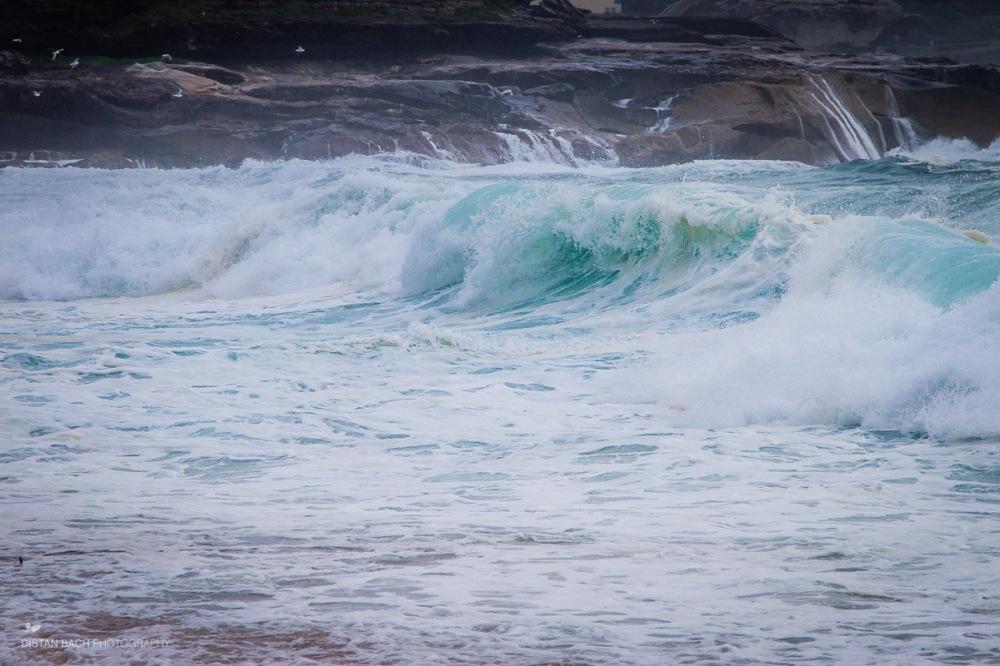 Bronte beach storm Feb 13-6