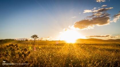 Sunset across the fields