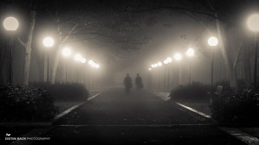 Foggy walk home