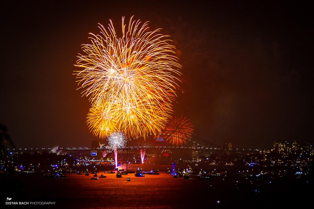 distan bach-Sydney NYE-Fireworks-1