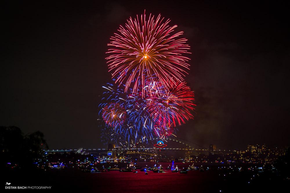 distan bach-Sydney NYE-Fireworks-4