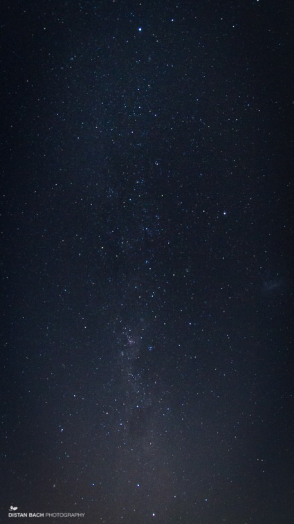 Milky Way from the southern hemisphere