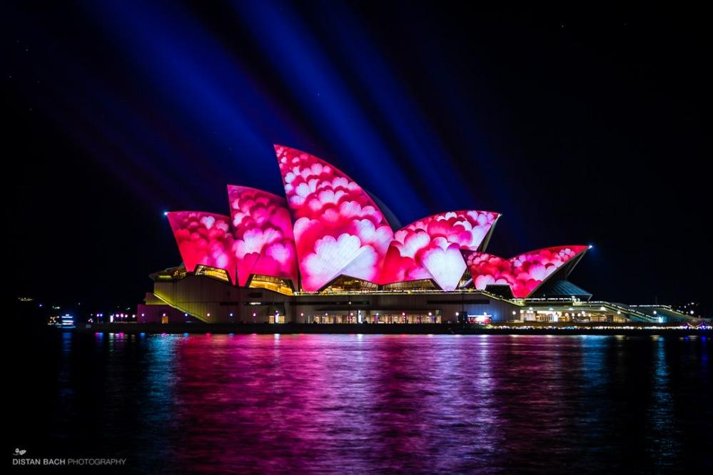 distanbach-Sydney Opera House-Vivid-3