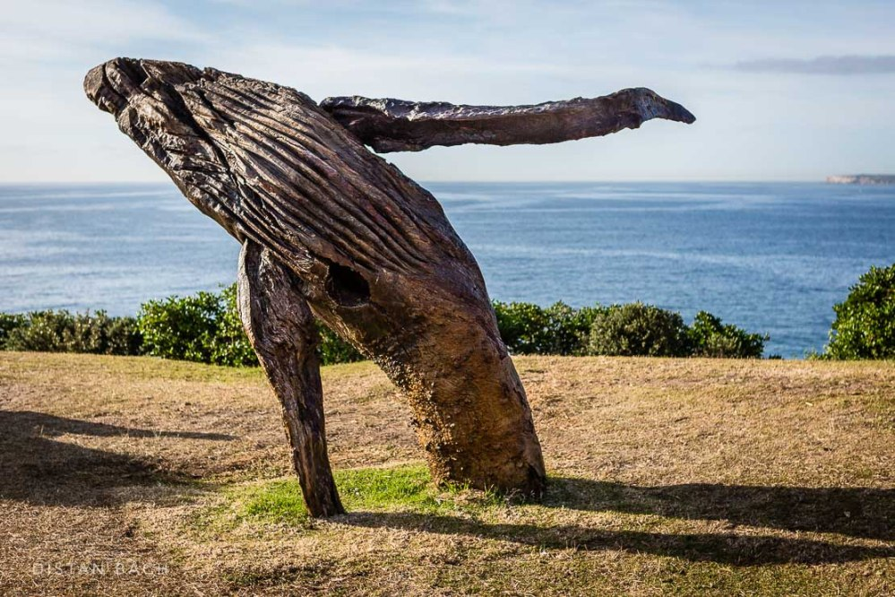 distanbach-Sculptures by the sea-28