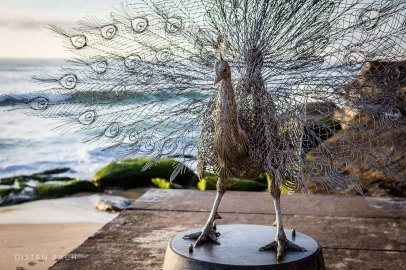 distanbach-Sculptures by the sea-3