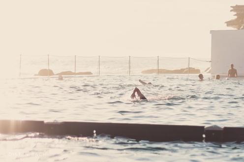 Laps at Bronte pool