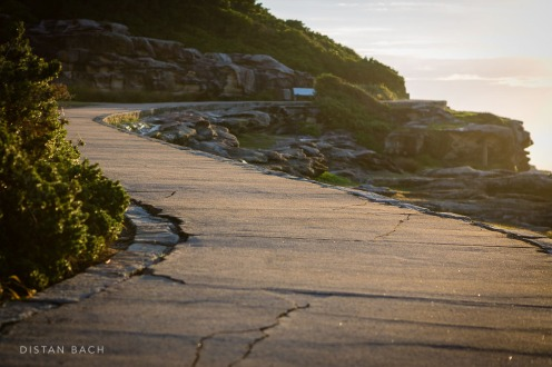 This way leads to Bondi