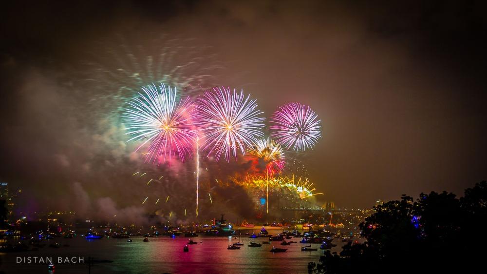 distanbach-2015 Sydney NYE Fireworks-4