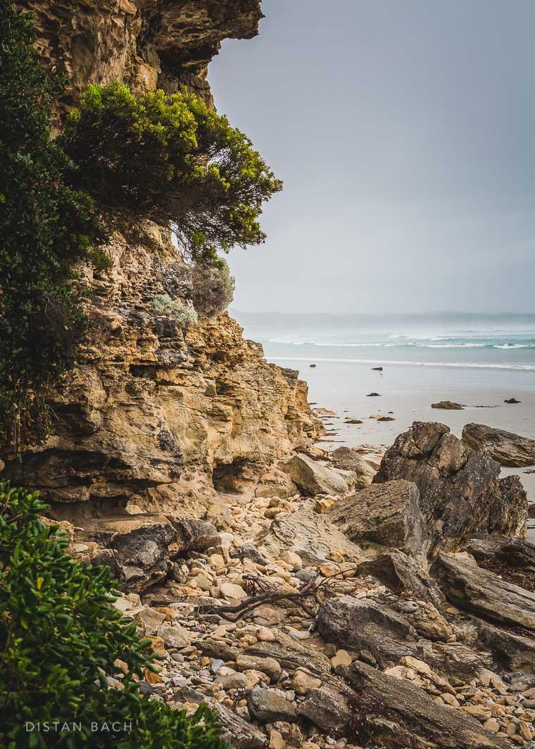 distanbach-Cape Bridgewater-2