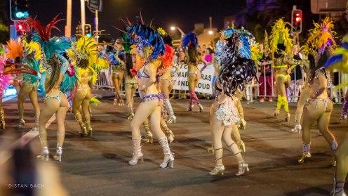 distanbach-Mardi Gras 2016-28
