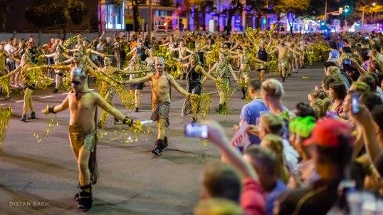 distanbach-Mardi Gras 2016-6